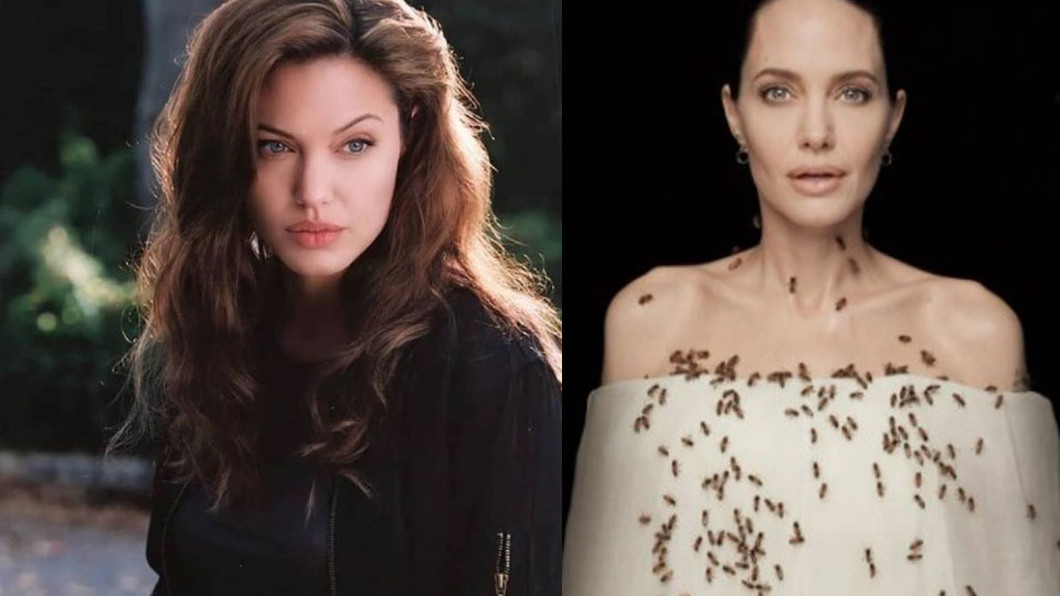 Angelina-Jolie.hollywood
